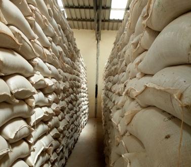 Les agences humanitaires s'engagent à soutenir le système ouest-africain de stockage de sécurité alimentaire