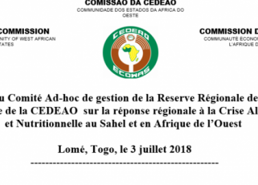 Réunion du Comité Ad-hoc de gestion des interventions de la Réserve Régionale