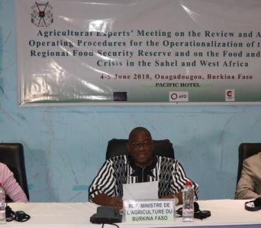 Les Experts et le Comité Technique Ministériel Spécialisé Agriculture de la CEDEAO réunis autour de la mise en œuvre de la Réserve Régionale de Sécurité Alimentaire dans le contexte de la crise Alimentaire et Nutritionnelle en Afrique de l'Ouest