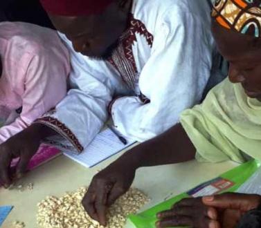 La Cedeao renforce les capacités des organisations paysannes pour contribuer à l'approvisionnement de la Réserve régionale de sécurité alimentaire.