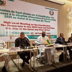 Conclusions de la Réunion de haut niveau sur la coordination des réponses à la situation alimentaire et nutritionnelle 2020 au Sahel et en Afrique de l'Ouest.